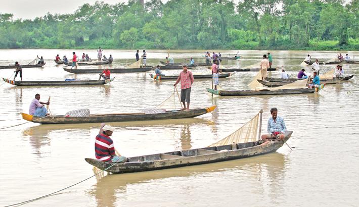Mother fishes start spawning in Halda River