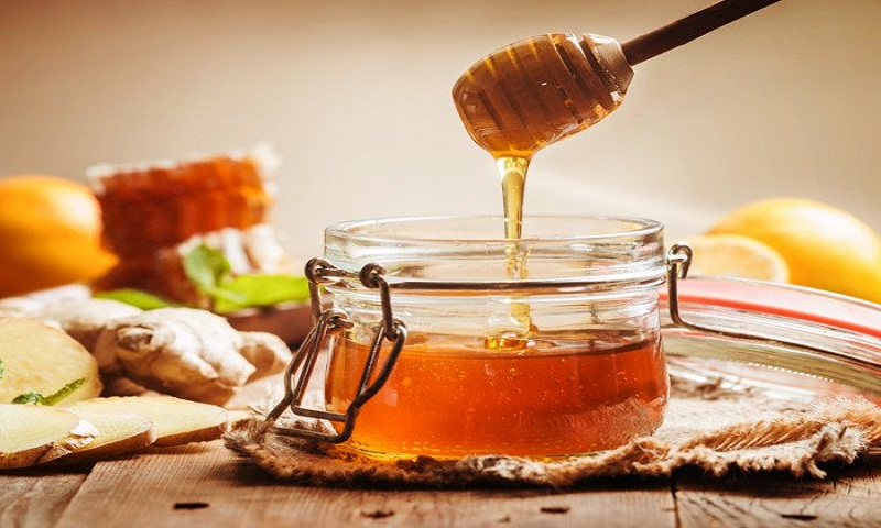 Image result for Monofloral Honey""