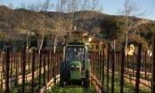 Why Californian wine will soon cost more in Beijing