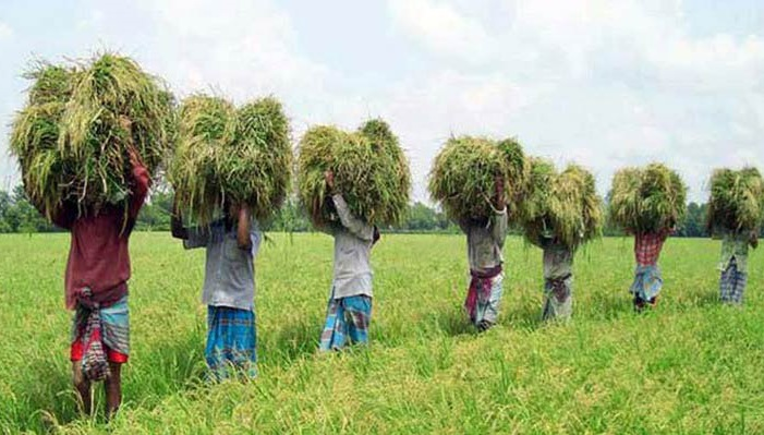 Data collection for Agriculture Census begins