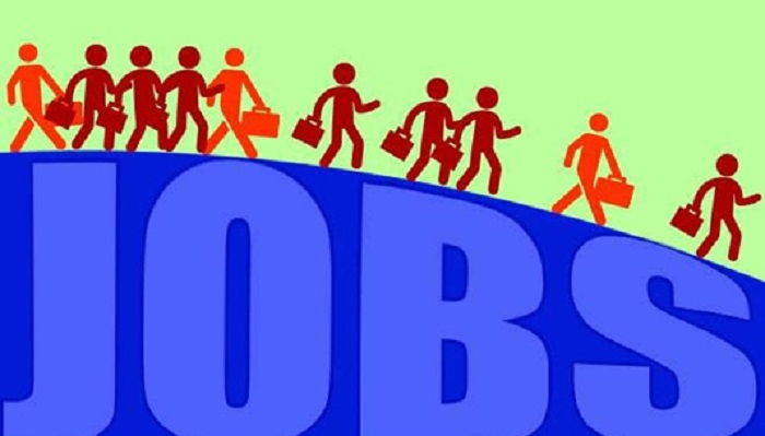 Three-year programme taken up to increase job creation rate