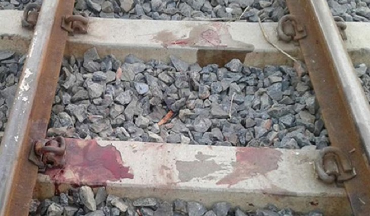 2 siblings crushed to death by train in B'baria