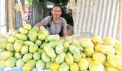 Seasonal mango trader