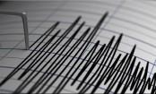 Powerful 7.4 magnitude earthquake strikes New Zealand