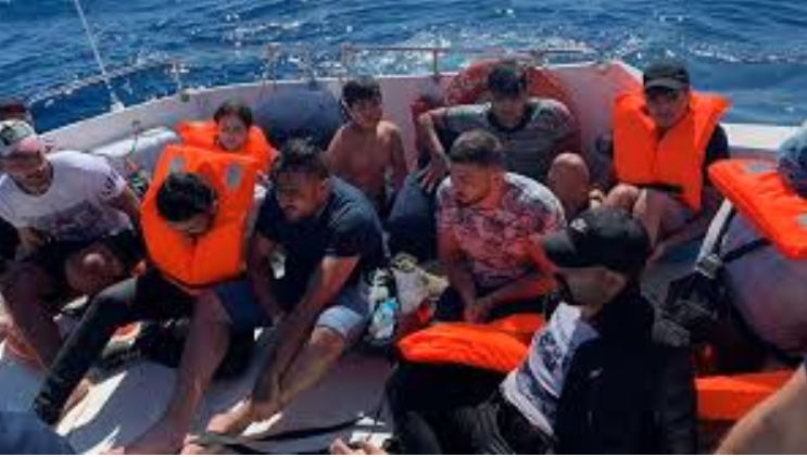 8 dead, 31 rescued after migrant boat sinks in Turkey