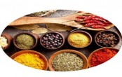 UK can be a potential market for Bangladeshi agro products, spices