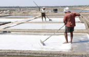 Salt farmers to get ID cards