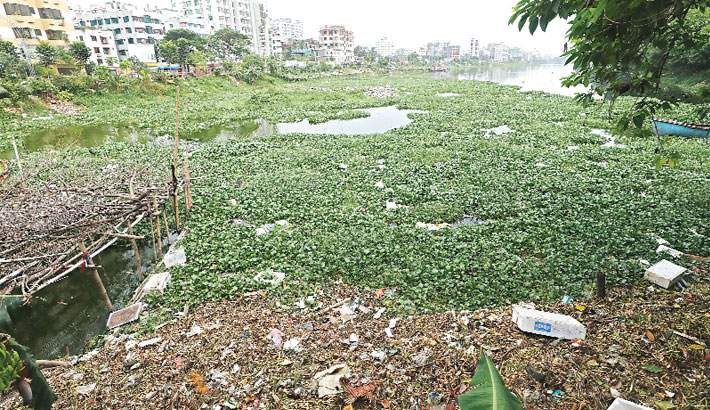 Indiscriminate dumping of waste materials into the Gulshan lake