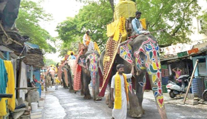 Activists vow to halt elephants' marathon train journey