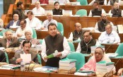 Finance Minister discloses names of top 300 loan defaulters