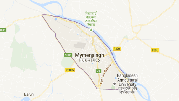 Two killed in Mymensingh road crash