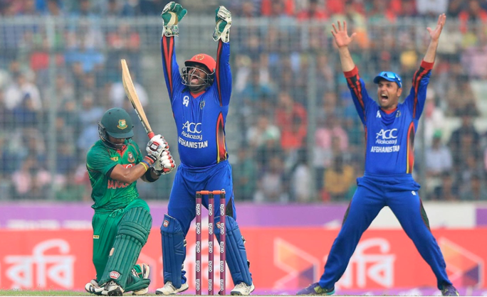 Bangladesh to host Afghanistan, Zimbabwe for T20 tri-series