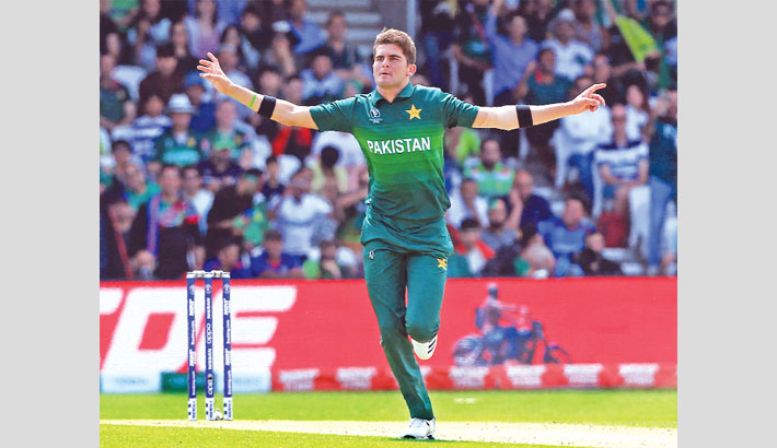 Pakistan pacer Shaheen Shah Afridi celebrates after taking a wicket against Afghanistan