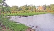 people use a risky bamboo bridge