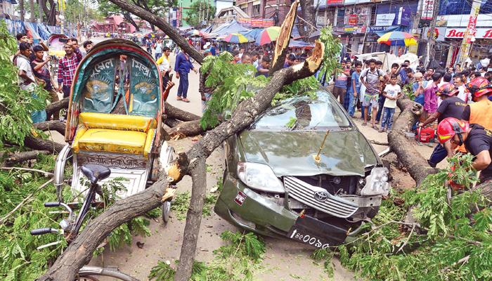 Roadside tree falls on car in city