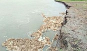 Swelling Jamuna river