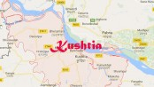 Youth's hanging body found in Khustia