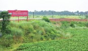 Muscle-weilding Priyanka Housing grabs land, violates DAP