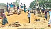 Govt procures 16 lakh tonnes food grains in FY 2018-19