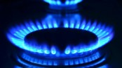 High Court turns down writ petition seeking stay on gas price hike