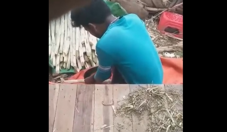 Video of adding saccharin into sugarcane goes viral