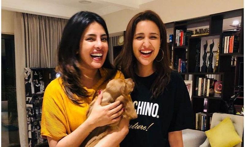 'Priyanka Chopra the only desi girl and no one can take her place,' says Parineeti Chopra