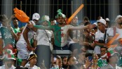 Algeria orders military planes to fly fans to Egypt for semi-final