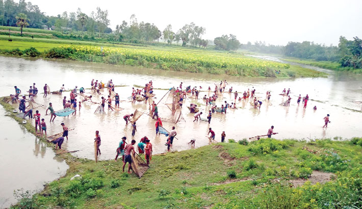 Local people are catching fish
