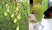 Ambarella: A Fruit That Comes With So Many Benefits