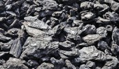 Govt to import 8 lakh MT of coal in 3 years