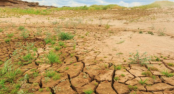Over 550,000 people affected by dry weather in Sri Lanka