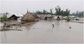 New areas flooded in Kurigram as Brahmaputra, Dharla swell