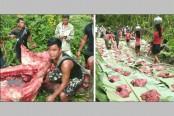 People feast on elephant meat