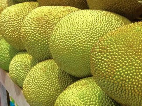 Govt. considering export jackfruit