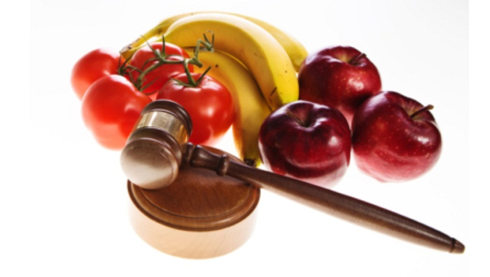 Call for immediate formulation of right to food law