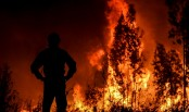 1,300 firefighters battle Portugal wildfires