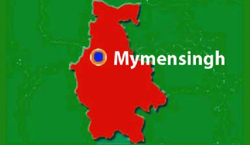 Woman, grandson electrocuted in Mymensingh