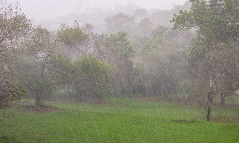 7 dead as torrential rains continue to lash Pakistan