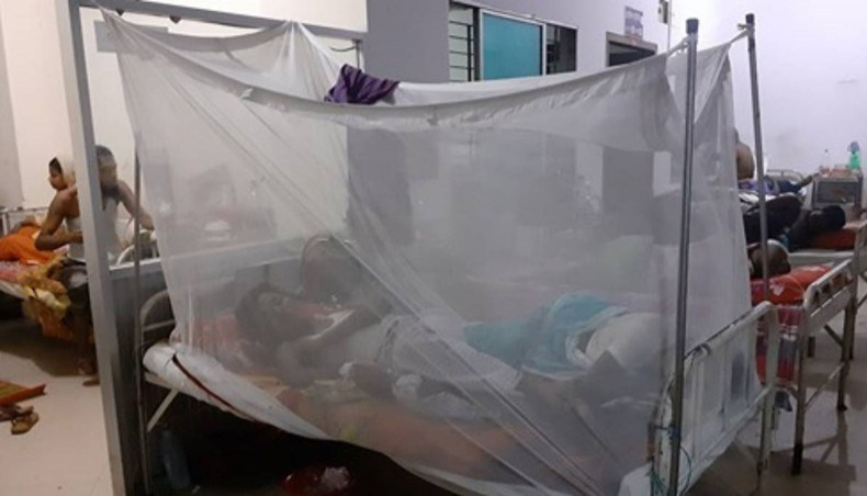 Three more dengue patients die in Dhaka, Barishal