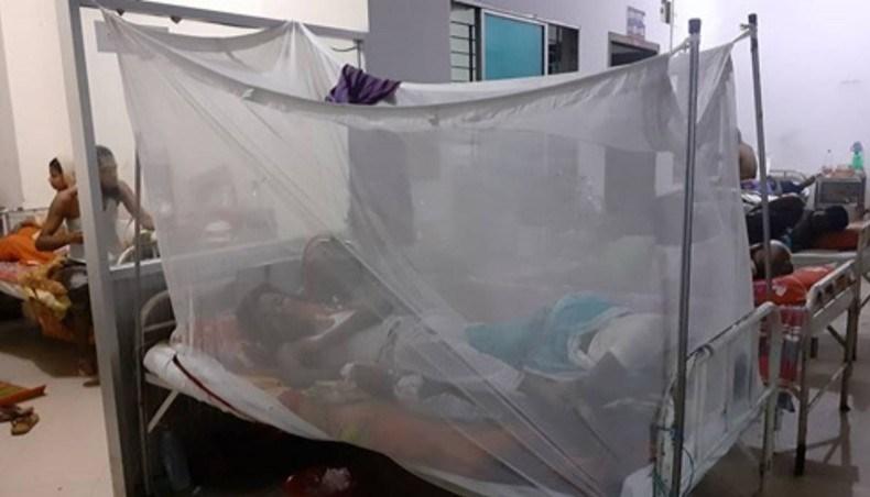 Three more dengue patients die in Dhaka, Barishal