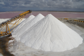 'No shortage of salt in country'