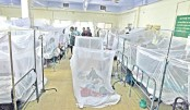 Dengue cases  rise in Ctg