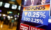 US interest rate cut fails to impress Trump
