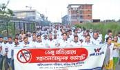 Walton holds dengue awareness campaign