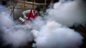 Government now trying to import 'banned' insecticides: Fakhrul