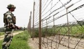 Bangladeshi cattle trader shot dead by BSF in Kushtia