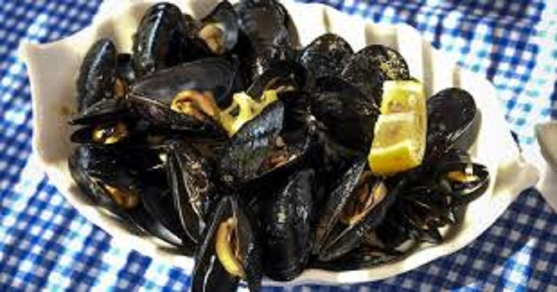 Albanian mussels suffocate as global warming takes toll