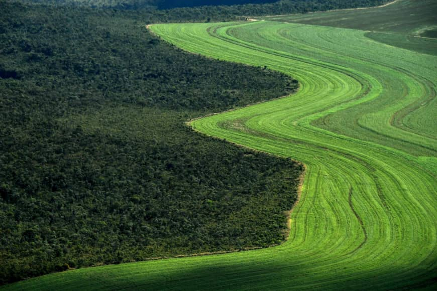 Ecological land grab: Food vs fuel vs forests