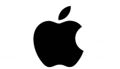 Apple takes lion's share of tablet market in Q2: report