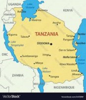 Two South Africans killed in plane crash in Tanzania: official